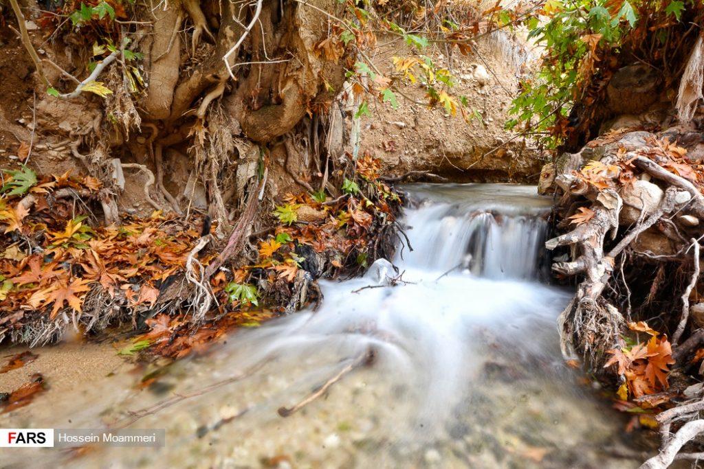 طبیعت زیبای پاییزی مهنان